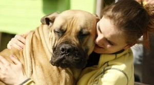 Who is your deal client pet sitting business